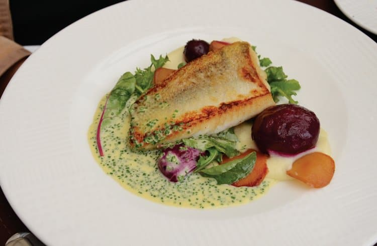pan fried local pike perch with parsnip-apple cream and chives - buerreblanc sauce