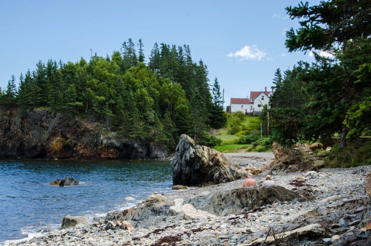 maine house on shore
