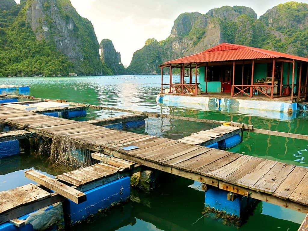 Pearl Farm, Halong Bay