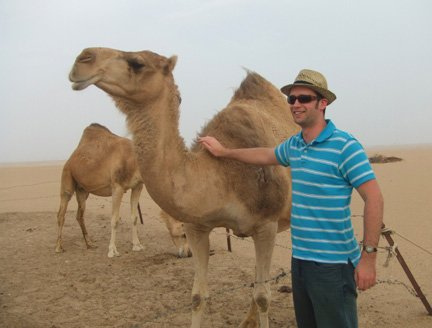 Bray with camel in Kuwait