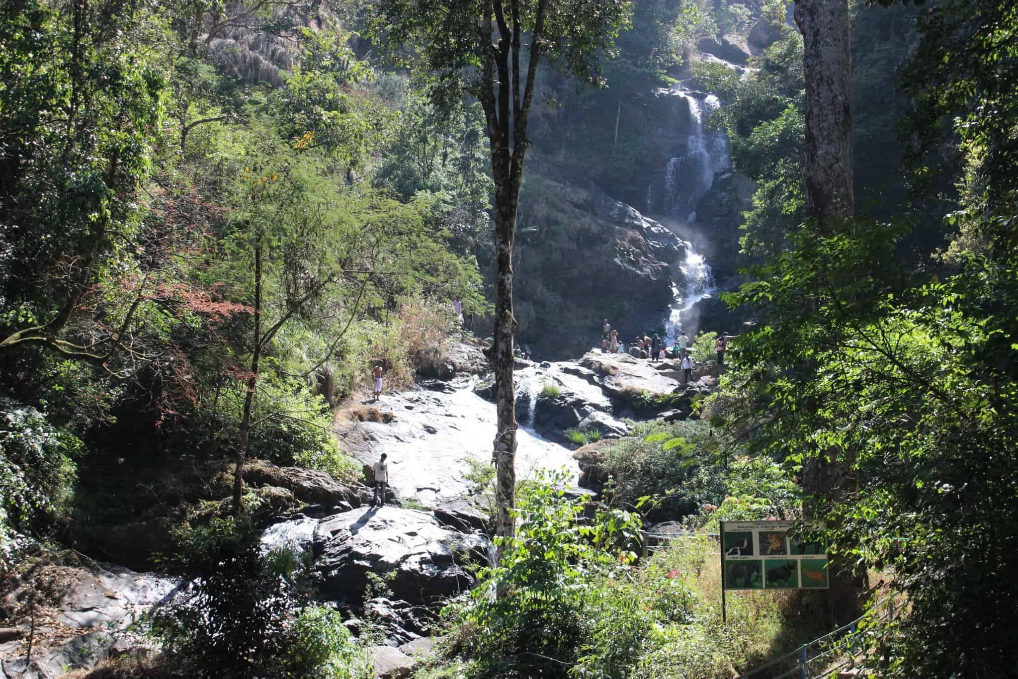 Nagarhole national park in Coorg, India