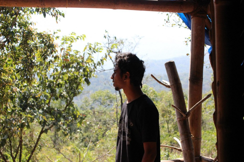 View outside bamboo cottage *